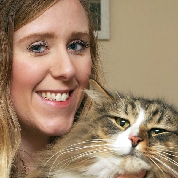 Великобритания, видео, соцсети, общество, поп-культура, животные, еда, Пропавшего кота нашли растолстевшим на продуктовом складе